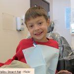 Dentistry - govt fund